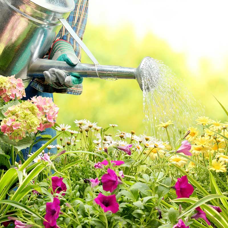 Amenajări grădini şi spaţii verzi